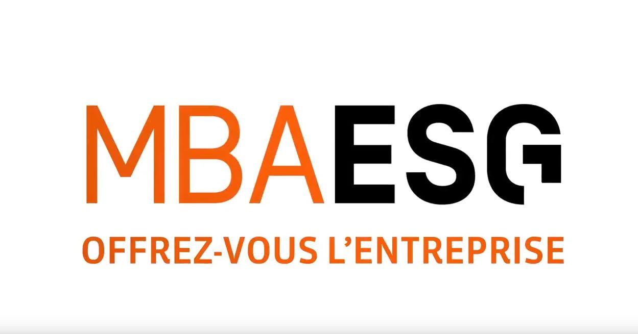 Offrez-vous le MBA intelligence économique et marchés africains!